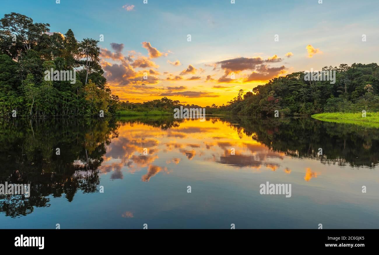 Panorama de una puesta de sol en la selva amazónica que comprende los países de Brasil, Bolivia, Colombia, Ecuador, Guyana, Perú, Surinam y Venezuela Foto de stock