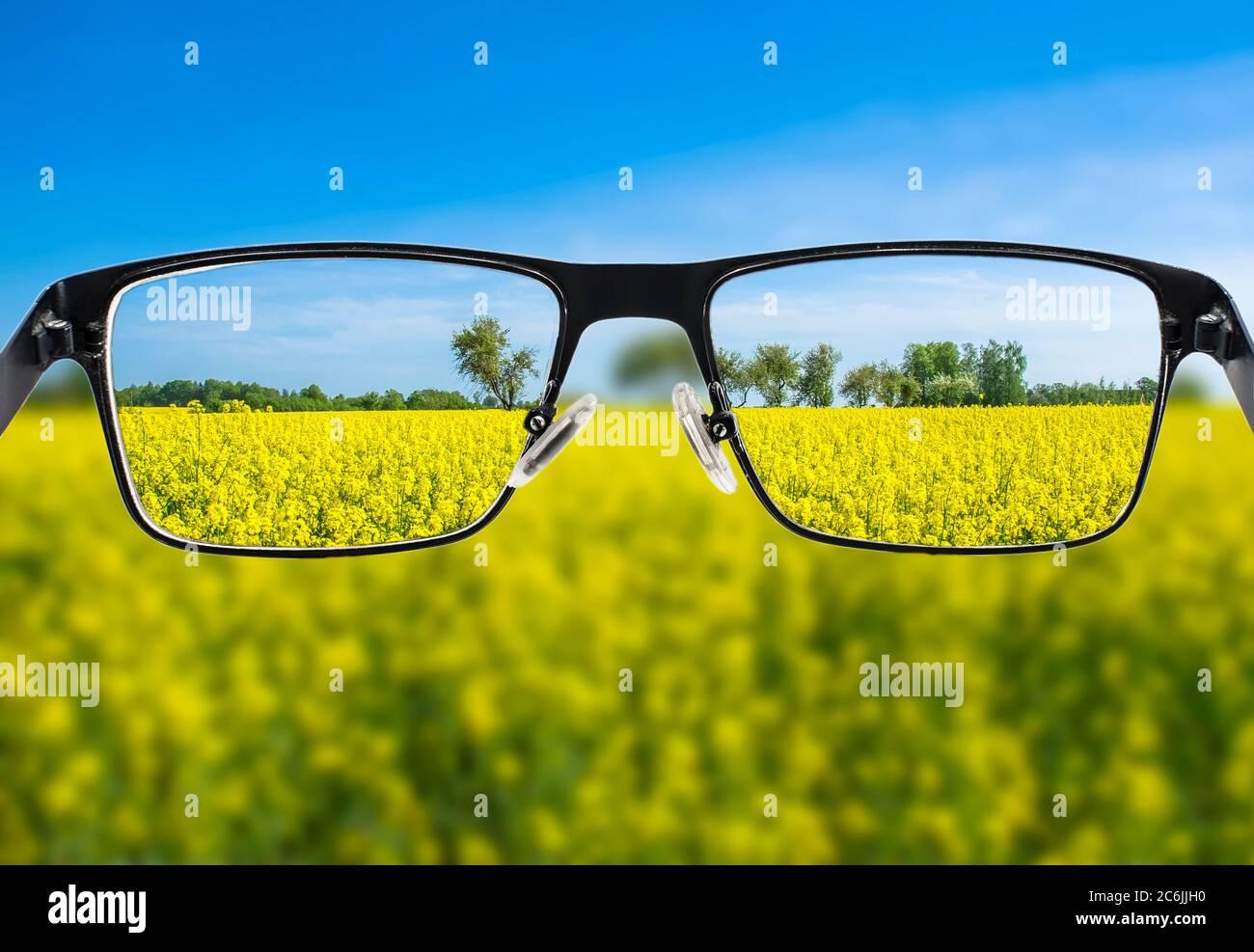 Imagen enfocada del campo amarillo en el marco de las gafas. Mejor concepto de visión. Foto de stock