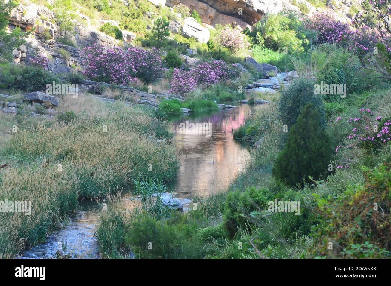 El río Palancia, un ejemplo del río de montaña mediterráneo en la región de Valencia, al este de España Foto de stock