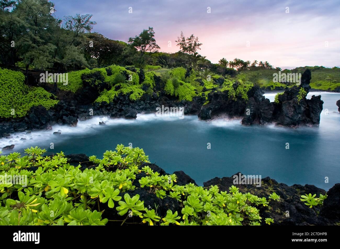 Parque Estatal Wai'anapanapa. Una ubicación frondosa con cuevas marinas y acantilados volcánicos. Autopista Hana. Maui. Hawai. Esta es una gran parada en el camino a Hana. B Foto de stock