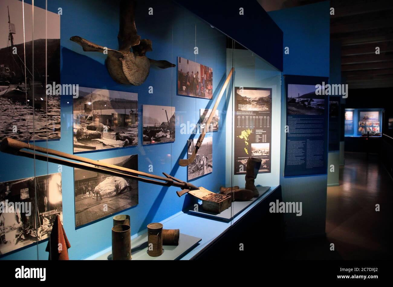 Exposición de historia ballenera en el Museo Nacional de las Islas Feroe.Torshavn.Streymoy.Territorio de Dinamarca Foto de stock
