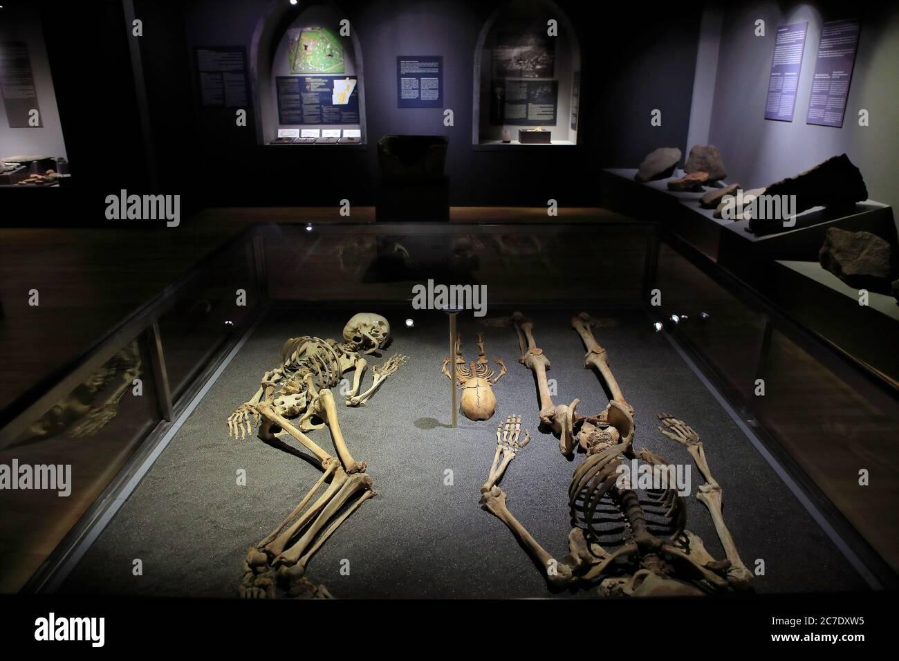 Esqueletos excavados de hombre, mujer e infante en exhibición en el Museo Nacional de las Islas Feroe.Torshavn.Streymoy.Islas Feroe.Territorio de Dinamarca Foto de stock