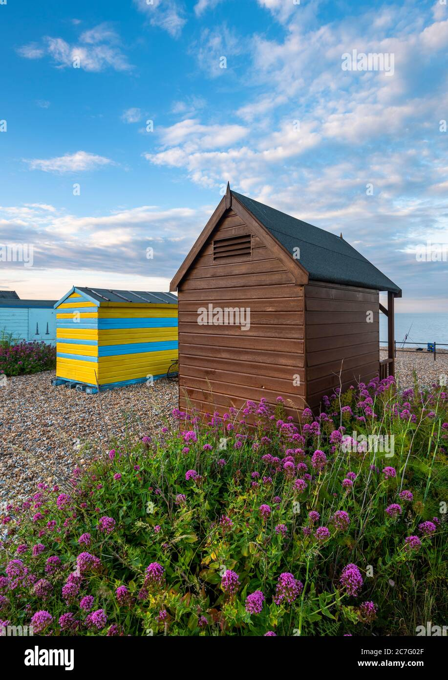 Cabañas de playa en la playa Kingsdown cerca tratar con flores rojas Valerianas en el primer plano. Foto de stock
