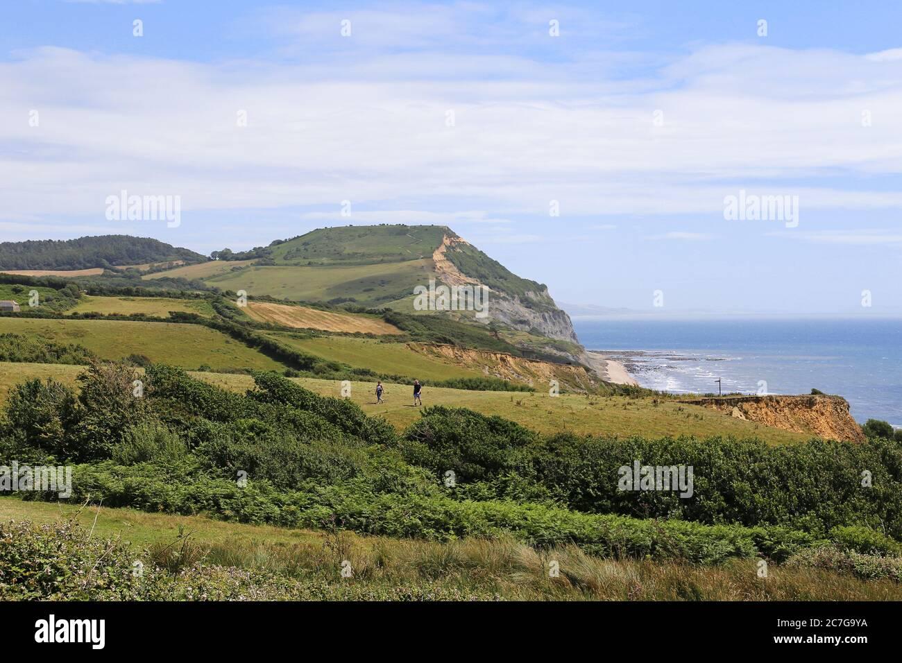 Golden Cap, South West Coast Path, Dorset, Inglaterra, Gran Bretaña, Reino Unido, Reino Unido, Europa Foto de stock