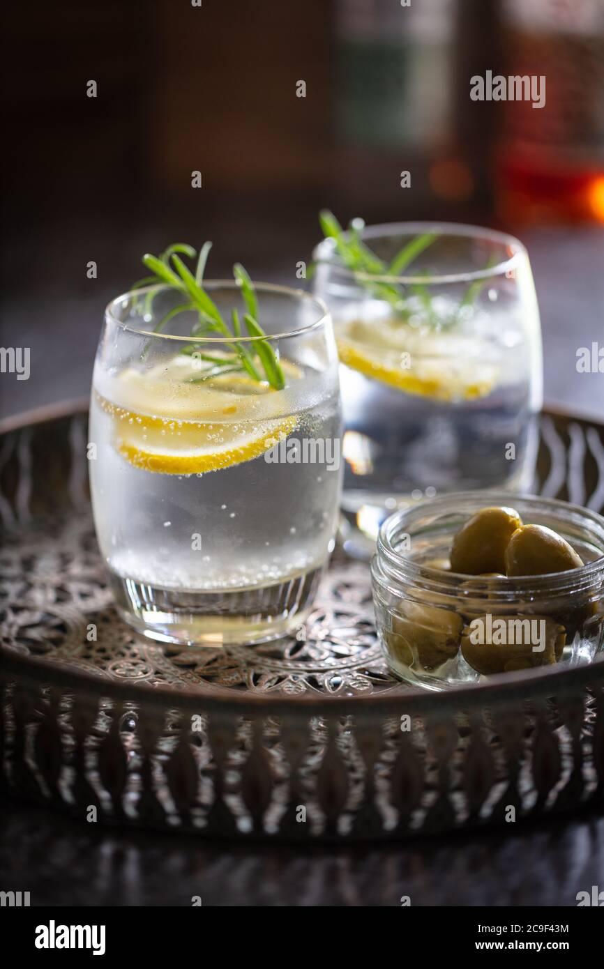 Bebidas alcohólicas (cócteles gin tonic) con romero de limón y hielo en una bandeja de bebidas de metal bruñido. Retrato Foto de stock