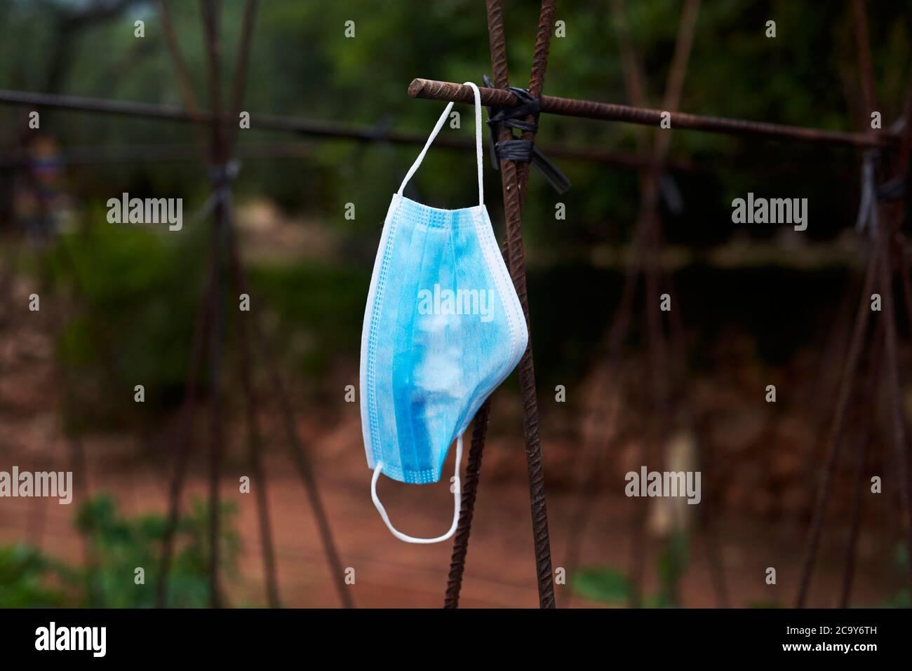 cierre de una máscara azul colgando del soporte oxidado por el cual las plantas de tomate y las plantas de frijol suben, en un huerto orgánico Foto de stock