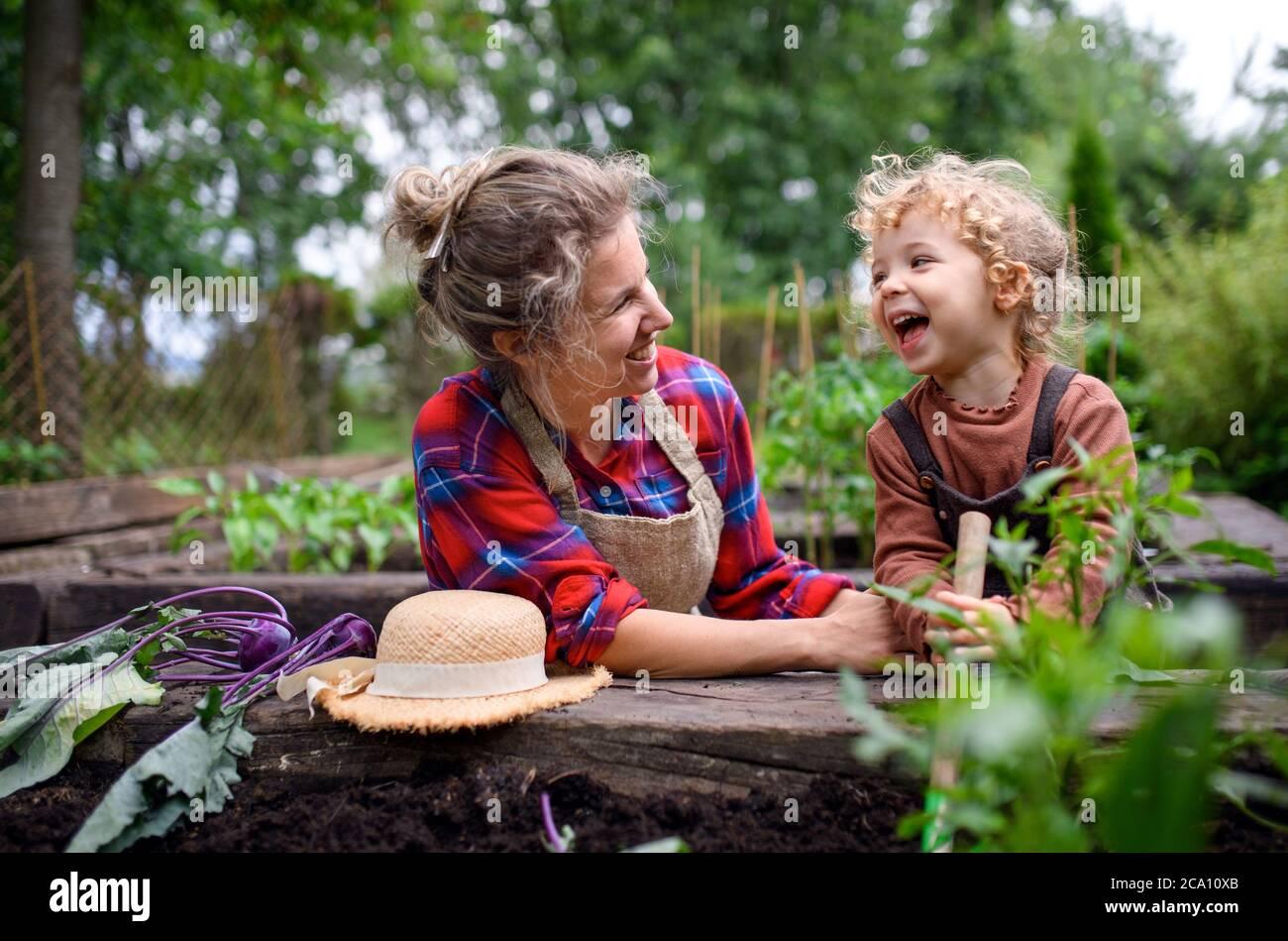 Madre con hija pequeña que cultiva un huerto en la granja, cultivando verduras orgánicas. Foto de stock