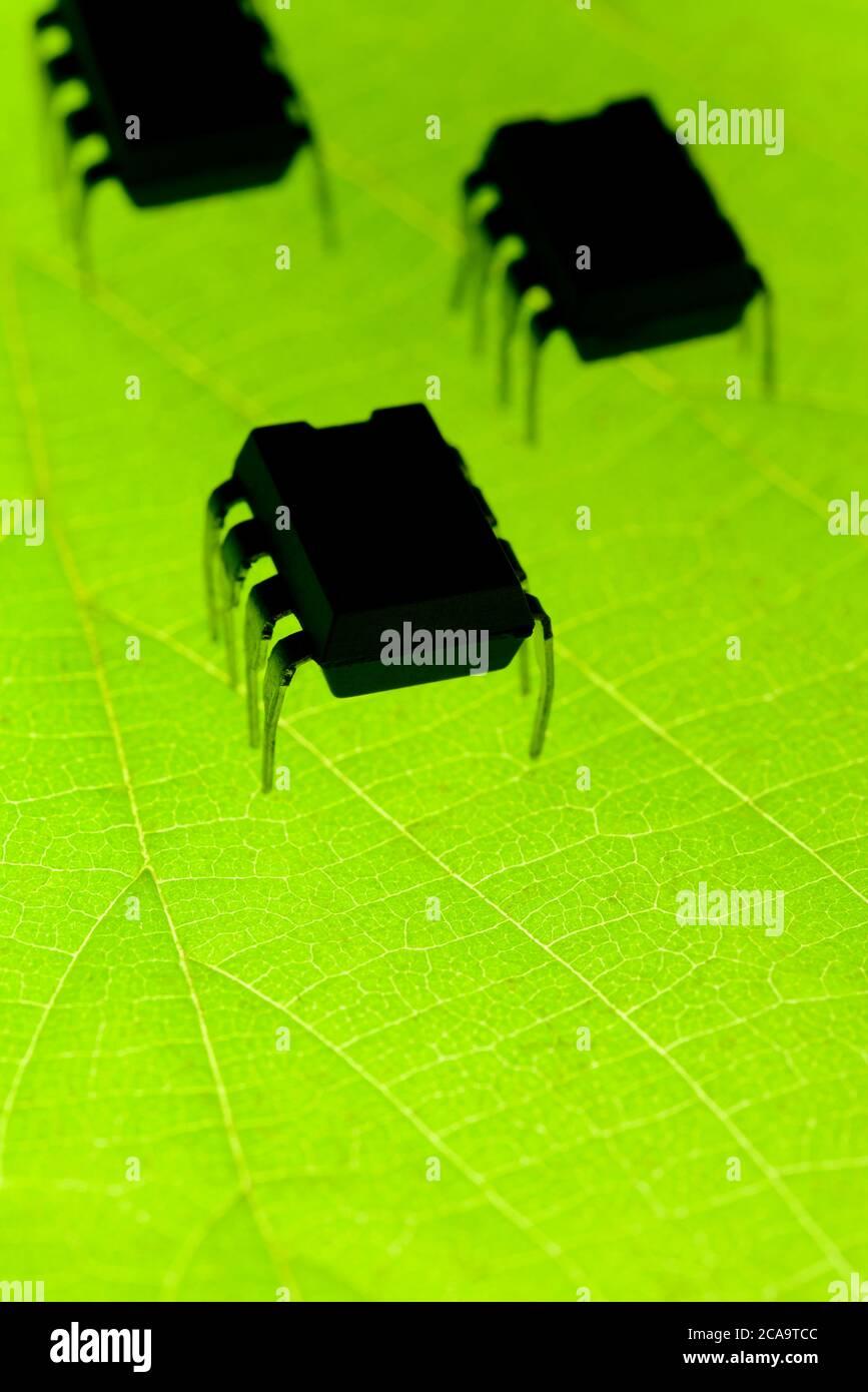 Insectos robóticos en hoja verde radiactiva Foto de stock