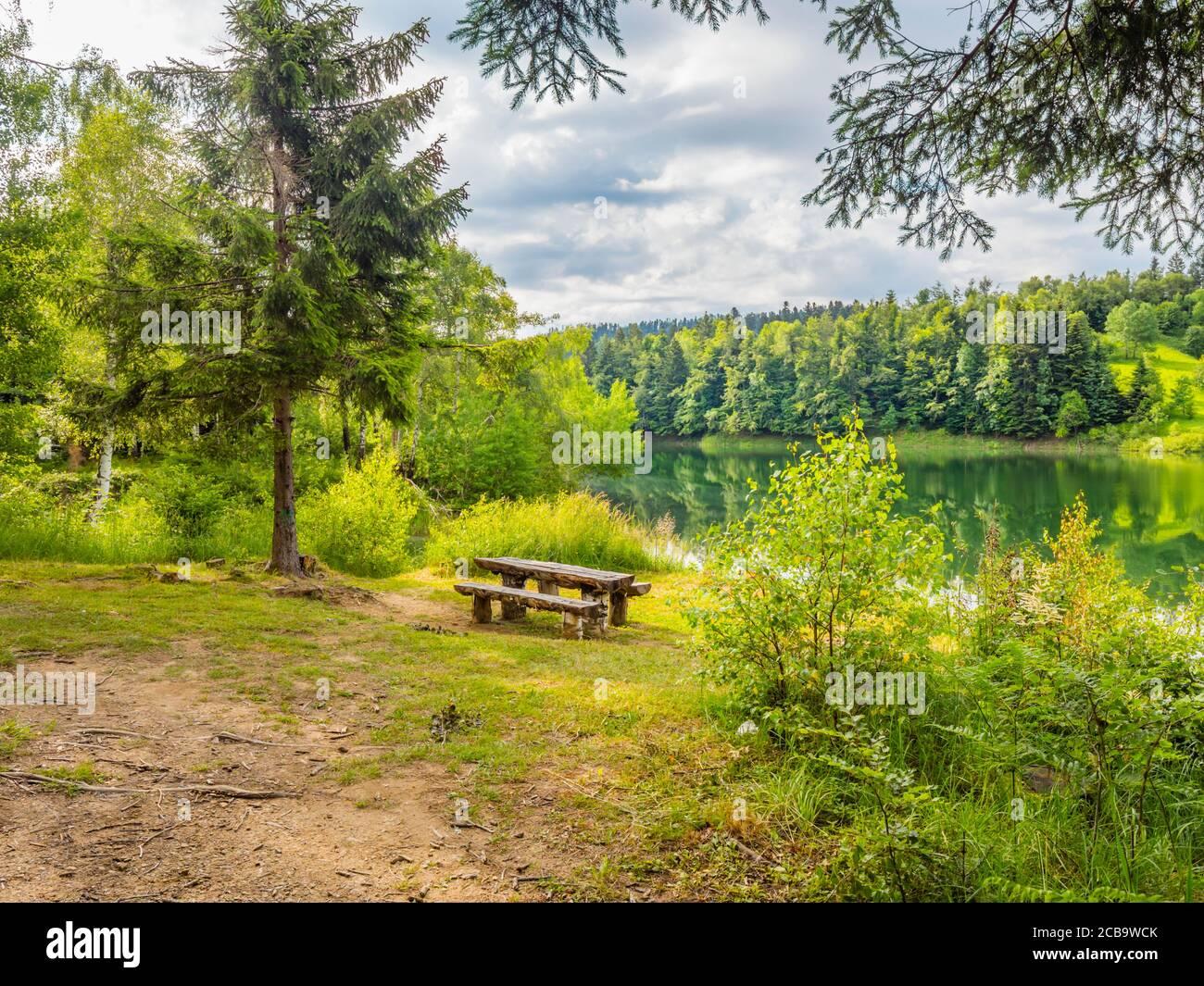Fantásticas vistas vista Verde bosque bastante hermoso naturaleza natural preservada Ambiente Temporada de primavera en el lago Mrzla vodica en Croacia Europa Foto de stock
