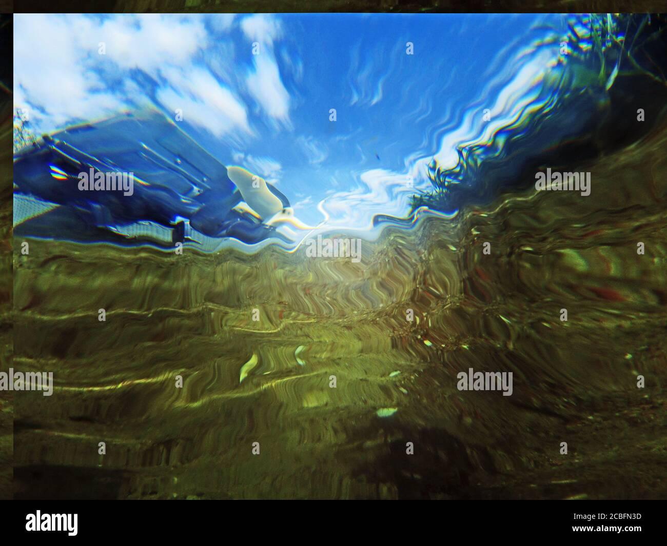 Außenborder unterwasser, Pötenitzer Wiek, Priwall, Ostsee, Travemünde Foto de stock