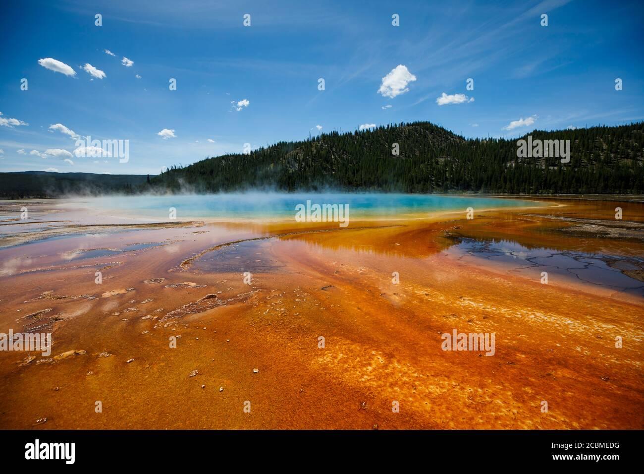 Las algas y las bacterias le dan a Grand Prismatic Spring sus impresionantes colores en el Parque Nacional de Yellowstone. Foto de stock