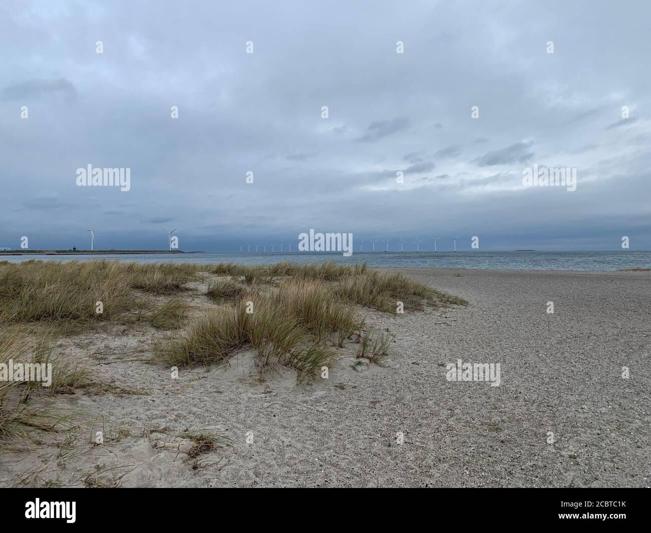 Amager Strandpark dunas de arena y molinos de viento en el fondo, Copenhague. Foto de stock