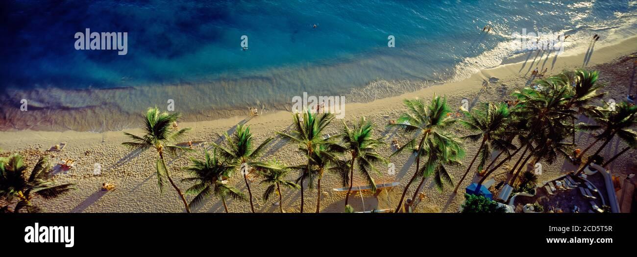 Vista de gran ángulo de las palmeras en la playa de arena Waikiki y el mar azul, Waikiki, Hawai, Estados Unidos Foto de stock