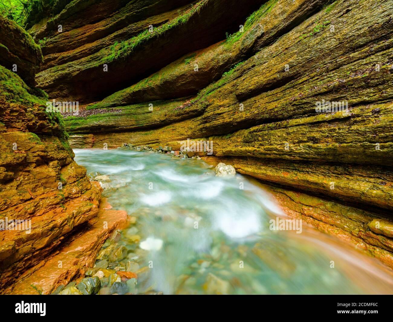 Gorge, arroyo, Taugl, Tauglbach, Tauglbachklamm, distrito de Hallein, Salzburgo, Austria Foto de stock