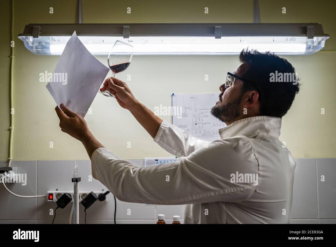 Vista lateral grave macho productor de vino en la túnica blanca examen calidad del vino tinto utilizando una hoja de papel en blanco contra luz brillante Foto de stock