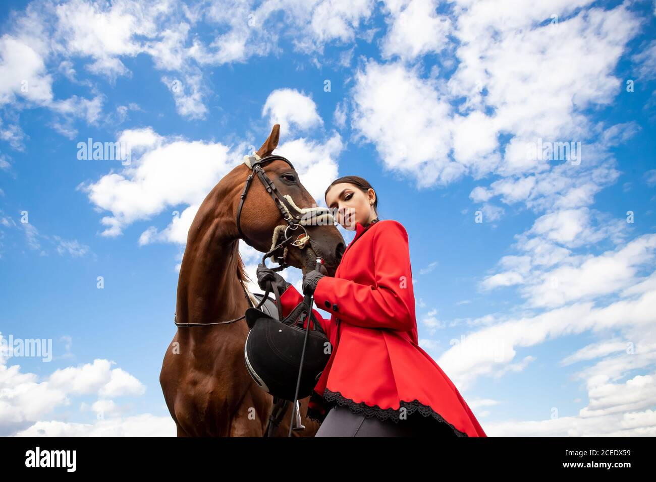 Foto de moda Deporte ecuestre Mujer jockey con caballo marrón, al aire libre Foto de stock