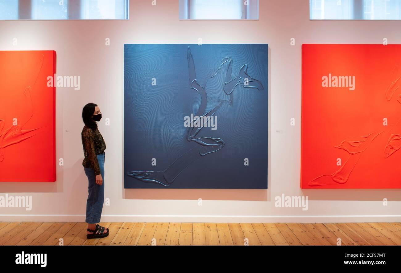 October Gallery, Londres, Reino Unido. 4 de septiembre de 2020. La Galería de Octubre exhibe una selección de obras de Tian Wei del 3 al 26 de septiembre de 2020. Conocida por sus sorprendentes lienzos monocromáticos en colores llamativos que exploran la palabra escrita, la obra de Tian Wei utiliza la idea China de contrarios mantenidos en equilibrio (yin y yang), palabras y citas en un guión de minutos llenan el telón de fondo de sus pinturas. Imagen (centro): Vistas del gestor de la galería 'Soul', 2017. Acrílico iridiscente sobre lienzo. Crédito: Malcolm Park/Alamy Live News Foto de stock