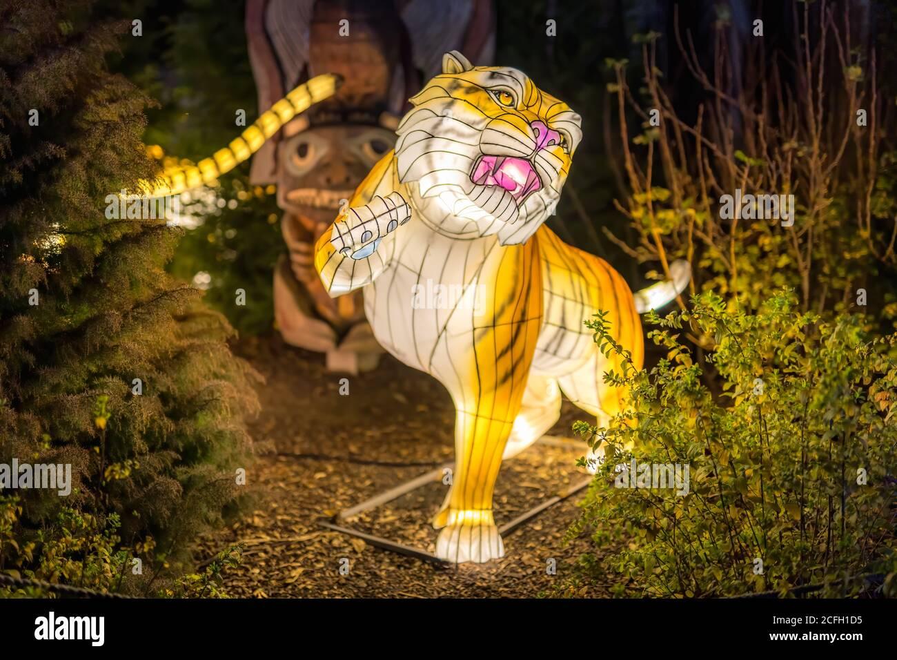 Dublín, Irlanda, noviembre de 2018 luces salvajes en el zoo de Dublín. Muestra de luz de animales africanos Foto de stock