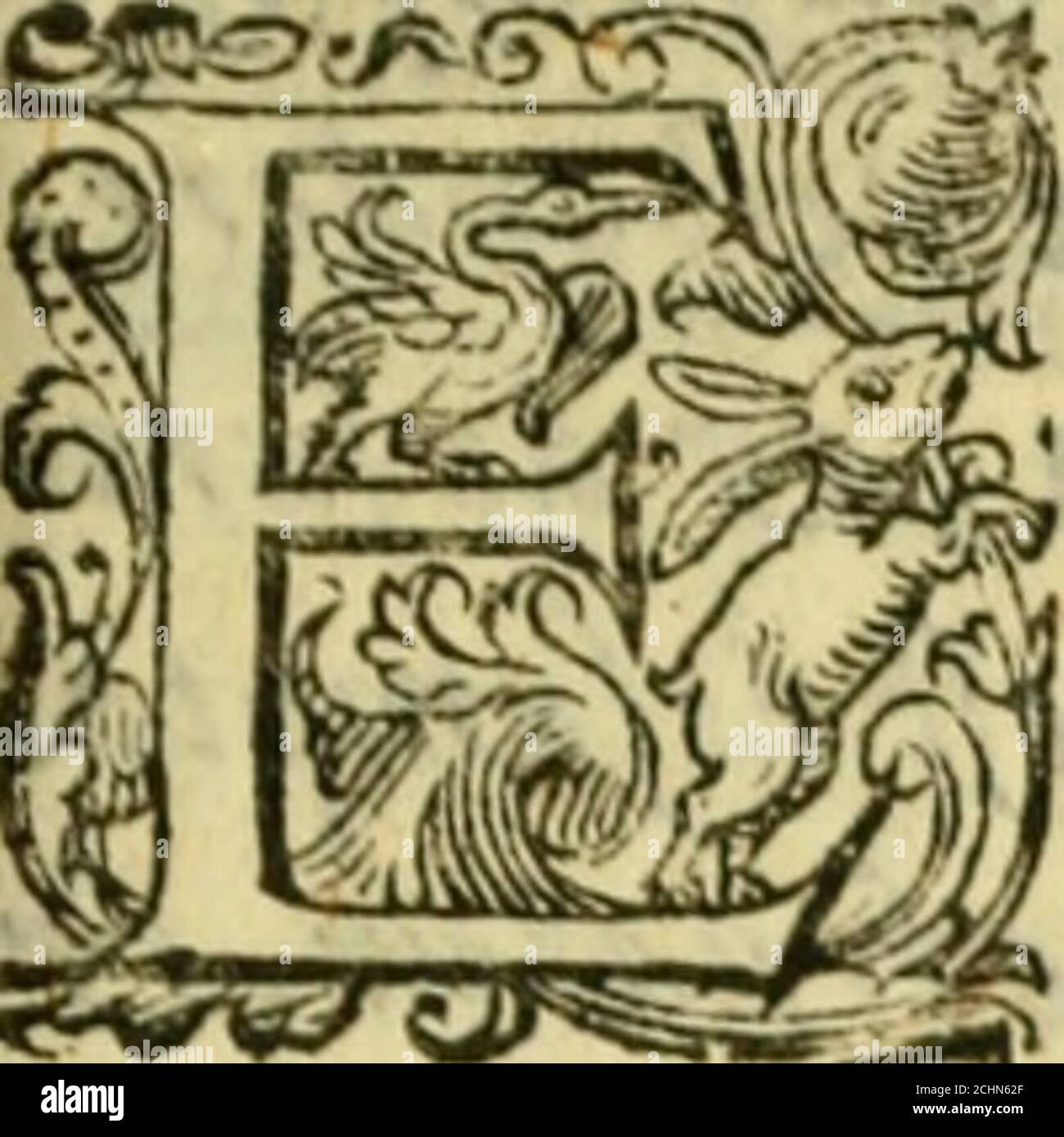 . Sito, et antichita della citta di Pozzuolo : e del suo amenissimo distretto. E di Cuma, et di Baia, e di Miseno ... con le figure de gli edifici, e con gli epitafi che vi sono. . S,D,N. PIOIL7 PONTIFICIA MÁXIMO. FRANCISCVSARETINVS.S. P. D. F. o LFENTI mihi quidam lihrorum volumina ( pie Pont.Max,) & animi laxandi grapfiacodices ilios perquirenti opufiulum luteolregiontmtmirabilium profitto virtutum quas in aquisimplicitas and AC lattere/legtere pote ìitas. Illas enim tute pipisien didicandasputaui quodtef Foto de stock