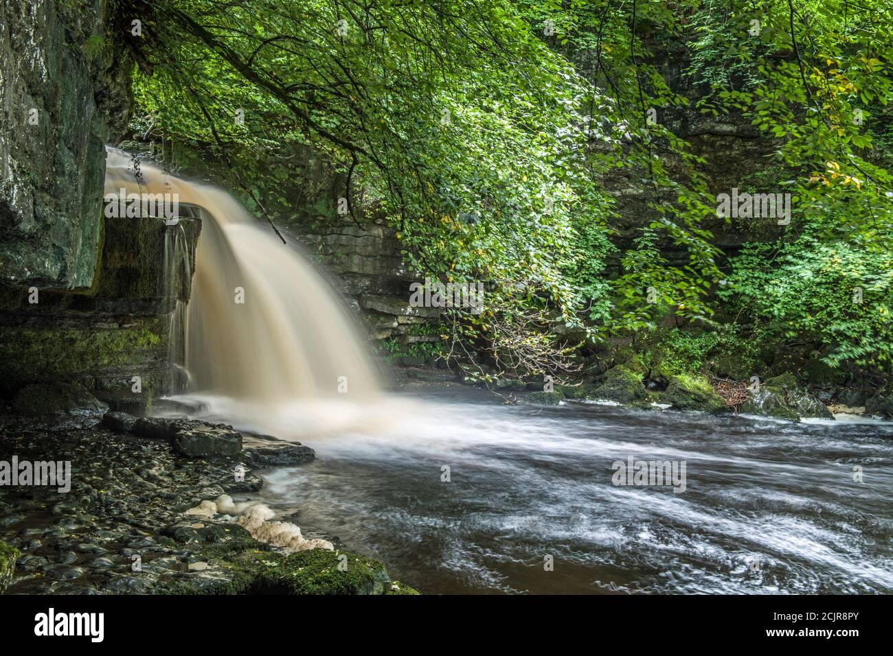 West Burton Falls en Bishopdale Yorkshire Dales National Park.muy popular entre los visitantes y los turistas. Septiembre. Foto de stock