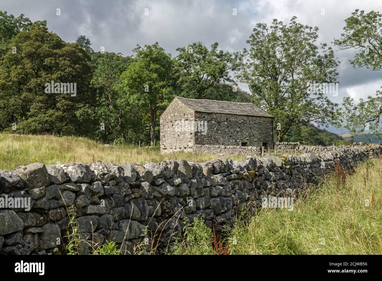 Un granero de Dales en el sendero a través del camino de Dales en el Parque Nacional de Yorkshire Dales. Muchos graneros se han dejado desmoronarse, pero otros han sido reconstruidos. Foto de stock