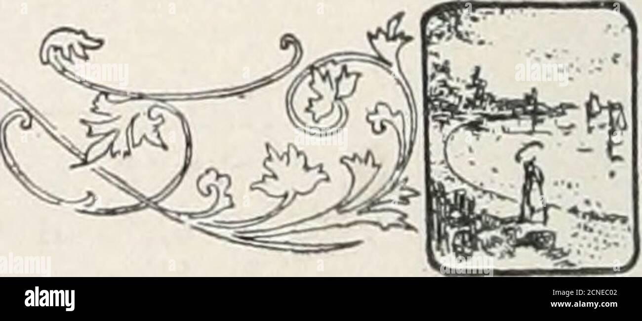 . El libro de aves : ilustrando en colores naturales más de setecientas aves norteamericanas; también varios cientos de fotografías de sus nidos y huevos . i j f j 352. AVES PERÍCOLAS 578. Cassins Sparrows Peuccea cassi)ii Cordillera.—llanuras y valles desde Texas y Arizonanorth hasta Kansas y Nevada. Estas aves se reproducen en números en las planicies áridas, colocando sus nidos de hierba en el suelo al pie de pequeños fanesor ocultos en los tubérculo de hierba, y durarMayo poner cuatro huevos blancos puros que son del mismo tamaño e indistinguisharede los de otros del género. Gana;. 579- Sparrow de alas rufas. R Foto de stock