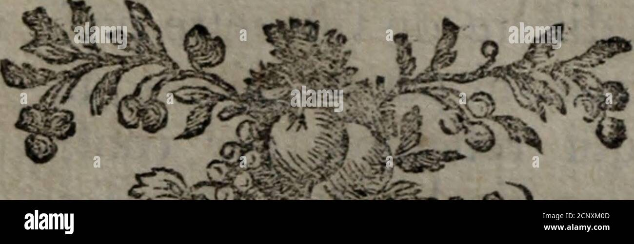 . Histoire naturelle des oiseaux . s fsuf-faies du territoire de Whiteford en Fiint-shïïq 5 où elle pafle tout Tété. ¿la iocuf-telle ne diacre de Talouette pipi? Ni parfon éperon, ni par ks allures, ni par fouchant qui reiîemble par conféquent àcelui dune cigale •, & ceft par cette rai- (a) el sauce lark iaiouette de fauîes, BritishZoology, p?.g. 95. Locujlella avkula D. Johnfin. Wilïughby, CN/i-îhoL pág. 151. Les dcfcriptioiis de ces deux Auteurs conTÎen-îient mieux ii cette efpèce quà la précedente ; aiiîeurs îis -ont écrit en Angleterre, & juficiia locufielie na point été obée fervai Foto de stock