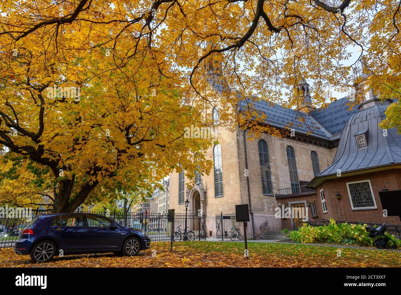Un coche estacionado bajo un árbol en el patio de la Catedral de Oslo en el otoño los árboles en el jardín de las hojas se vuelven de color amarillo y naranja. Foto de stock