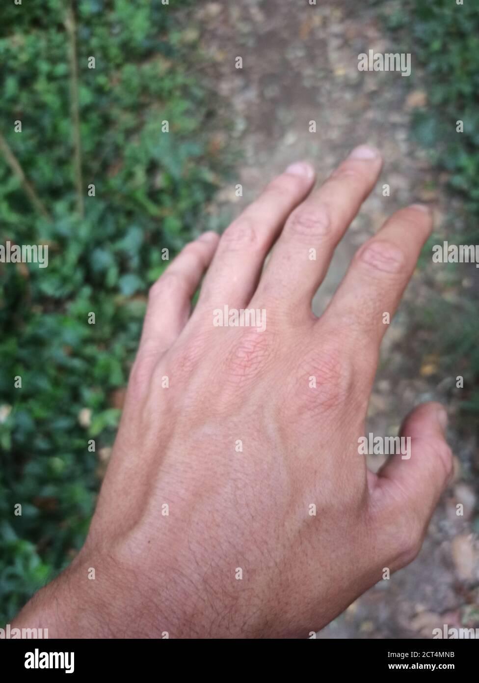 Tiro vertical de la mano de un hombre con venas abultadas un fondo borroso Foto de stock