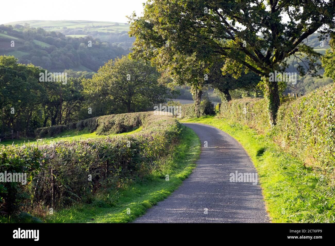 Carmarthenshire paisaje rural en otoño septiembre de 2020 Gales Reino Unido KATHY DEWITT Foto de stock