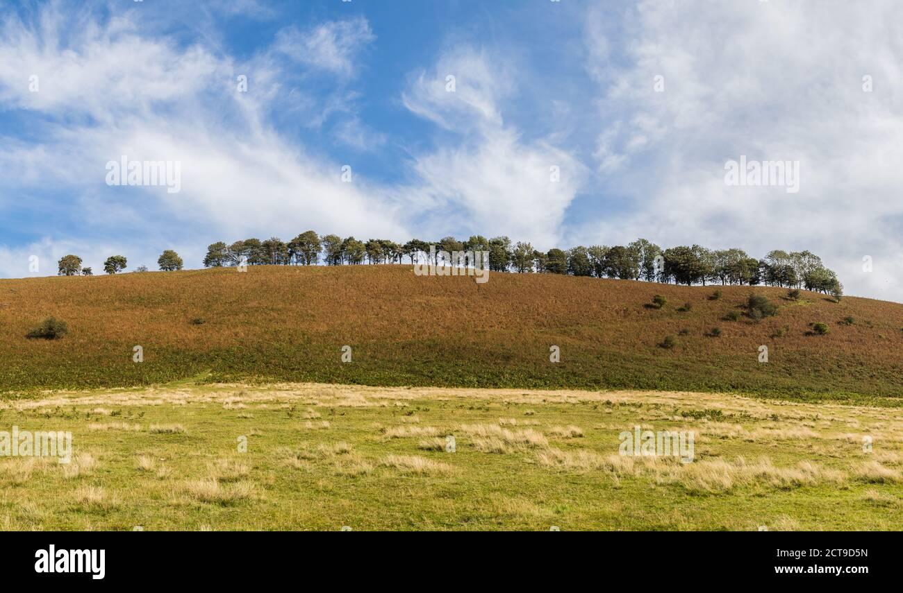 Panorama de múltiples imágenes de una colina arbolada en los páramos de Yorkshire del Norte bajo un cielo azul. Foto de stock
