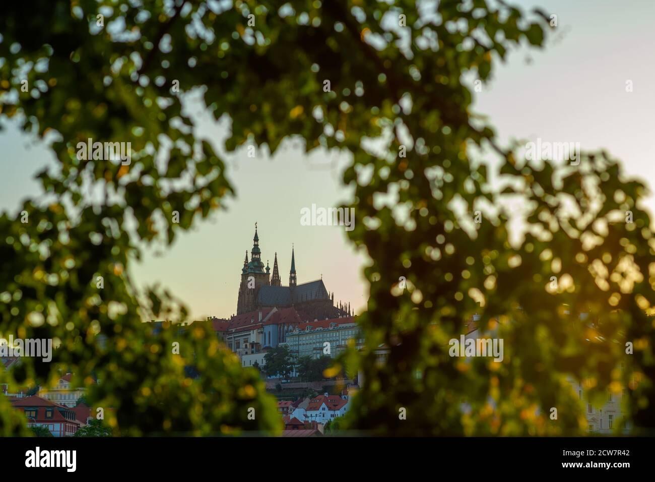 Paisaje de Praga, República Checa con la Catedral de San Vito a través del follaje en un día soleado. Foto de stock