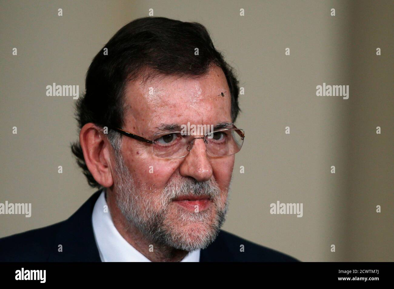 Spain's Prime Minister Mariano Rajoy attends a presentation on social action entities at the Moncloa Palace in Madrid July 11, 2013. Spain's Prime Minister Mariano Rajoy may take a pounding from fresh corruption allegations against his People's Party but the government is strong enough to ride the storm, analysts and sources say. REUTERS/Juan Medina (SPAIN - Tags: POLITICS HEADSHOT) Foto de stock