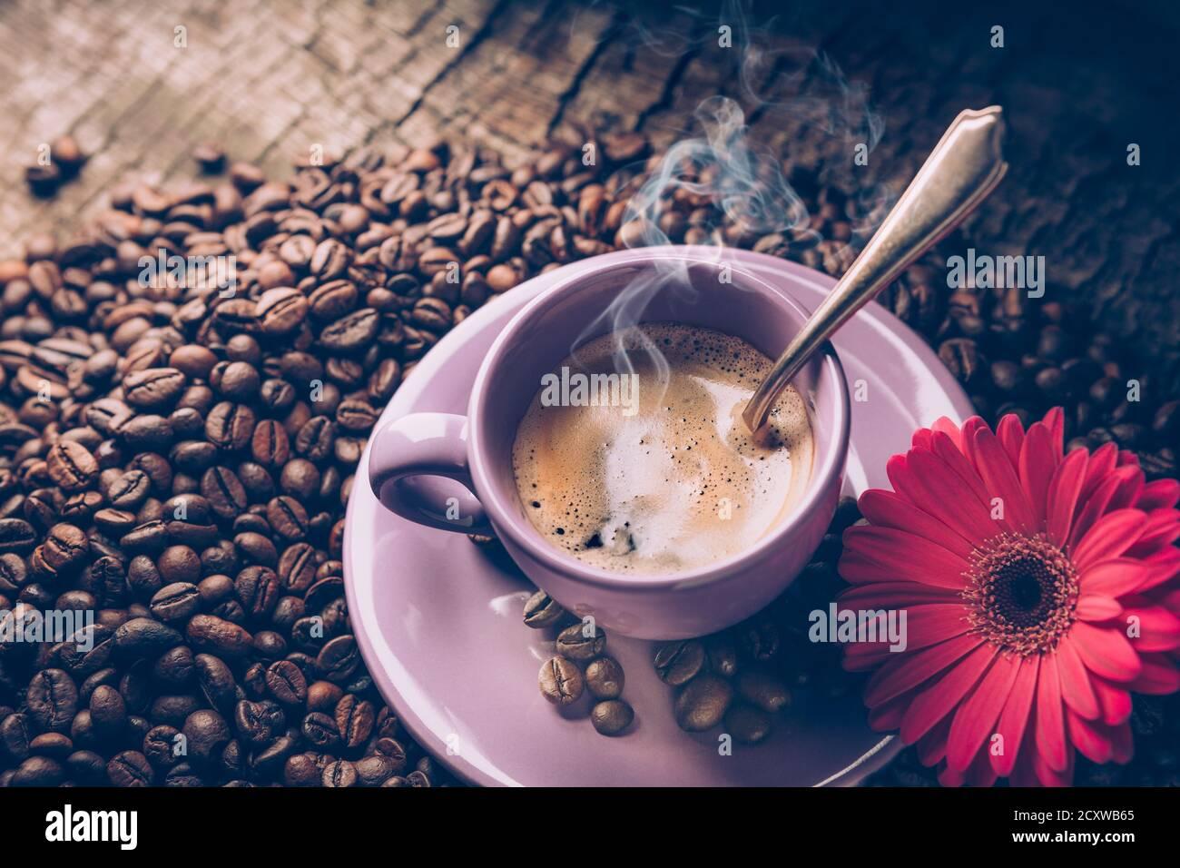 Gerbera Coffee Cup Fotos E Imagenes De Stock Alamy