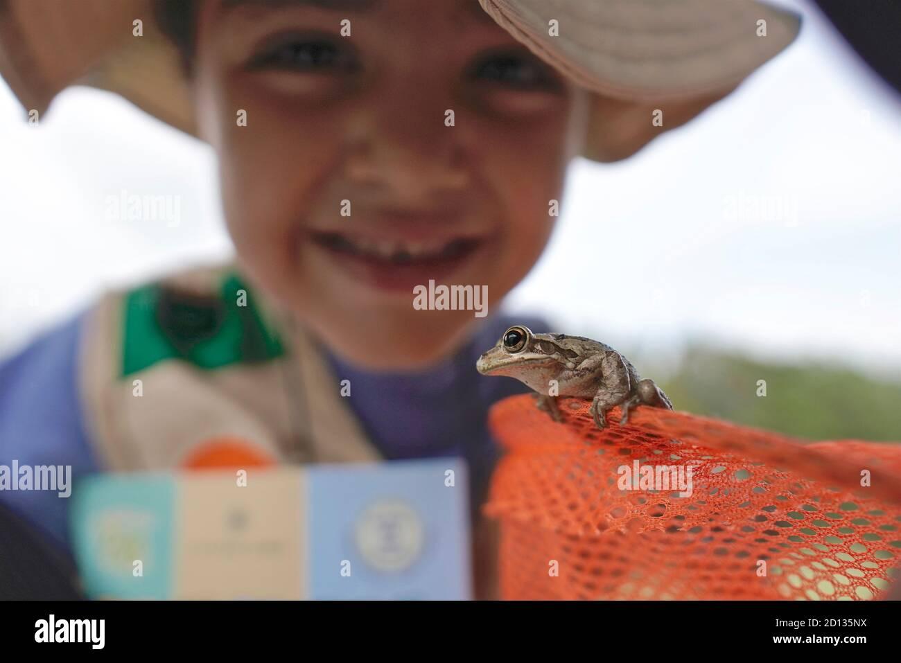 Chica mirando de cerca a una rana Foto de stock
