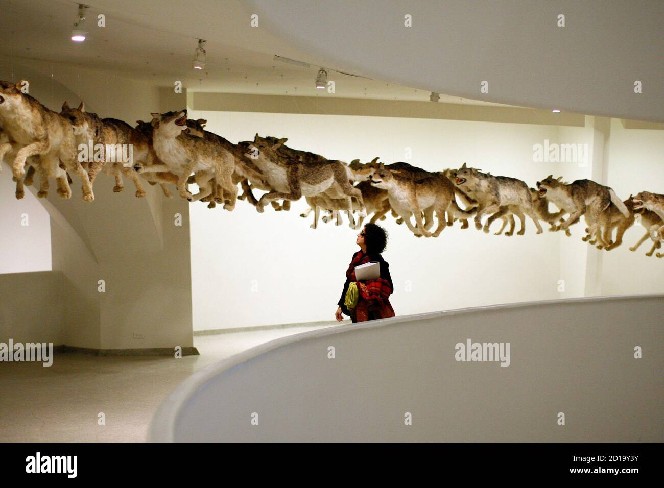 """A visitor to the Guggenheim Museum walks through the installation """"Head On"""" by the artist Cai Guo-Qiang in New York, February 21, 2008. The piece is part of the artist's exhibition Cai Guo-Qiang: I Want to Believe. REUTERS/Keith Bedford (UNITED STATES) Foto de stock"""