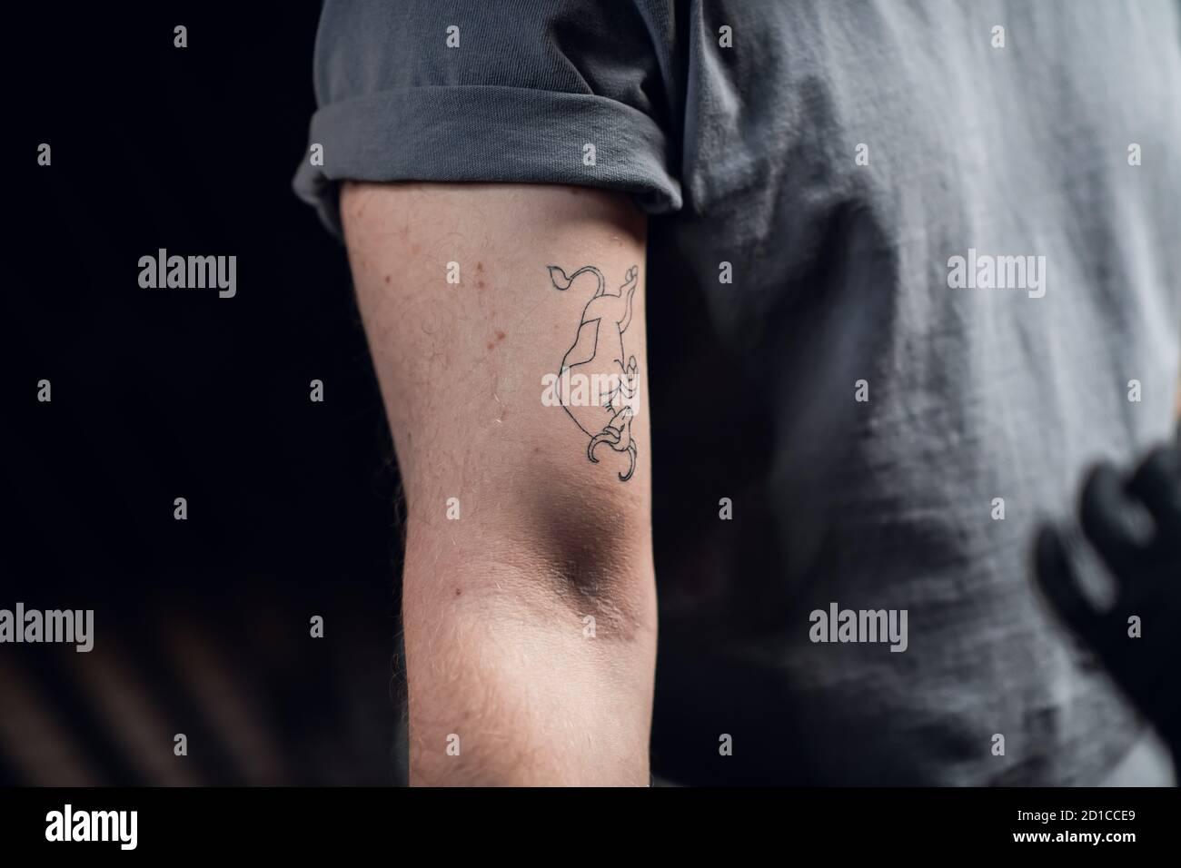 Tatuaje De Toro Fotos E Imágenes De Stock Alamy