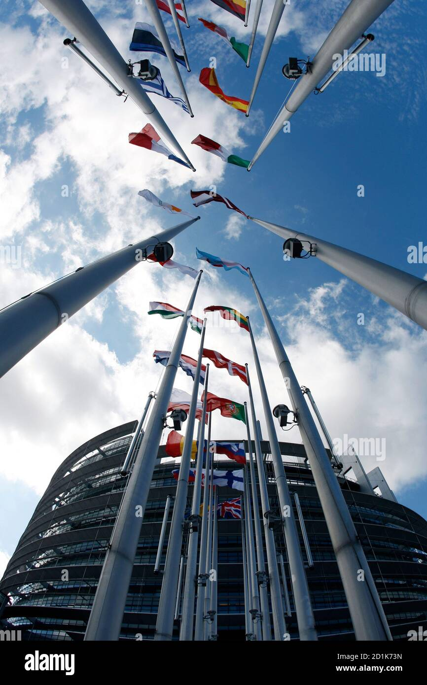 Flags of European Union member states fly in front of the European Parliament building in Strasbourg July 13, 2009, on the eve of the election of its new president. REUTERS/Vincent Kessler  (FRANCE POLITICS) Foto de stock