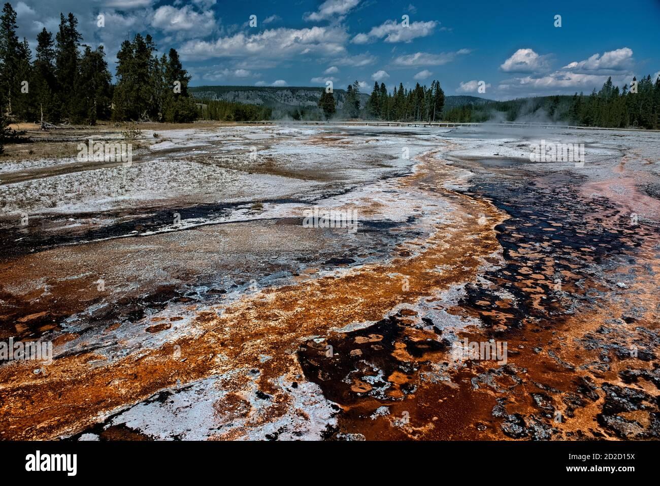 Esterillas bacterianas, Cuenca del Geyser Superior, Parque Nacional Yellowstone, Wyoming, EE.UU Foto de stock