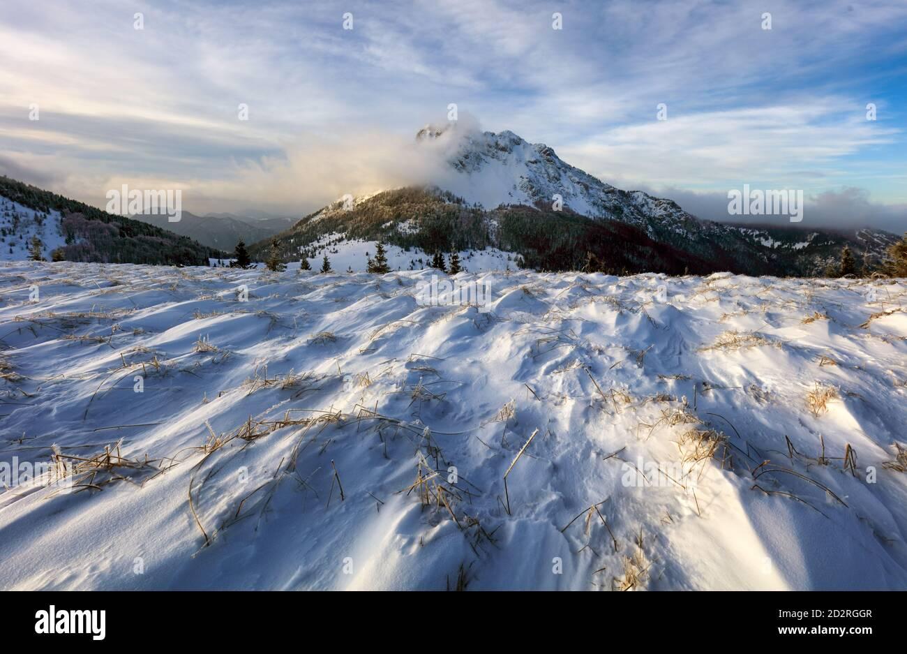 Campo de montaña con pico en invierno, paisaje nevado Foto de stock