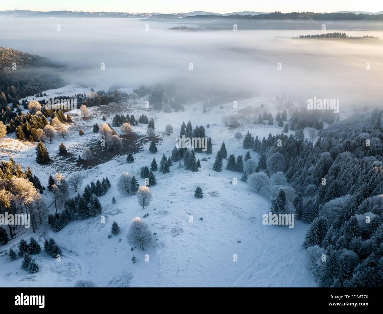 Árboles congelados cubiertos de nieve en el amanecer, capturados desde arriba con drones. Invierno naturaleza fondo. Transilvania, Rumania. Foto de stock