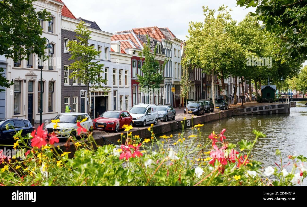 Vista del casco antiguo de la ciudad de Gouda. Calle Lage Gouwe con grandes árboles del canal y flores floreciendo en una tarde soleada. Holanda del Sur, Holanda. Foto de stock