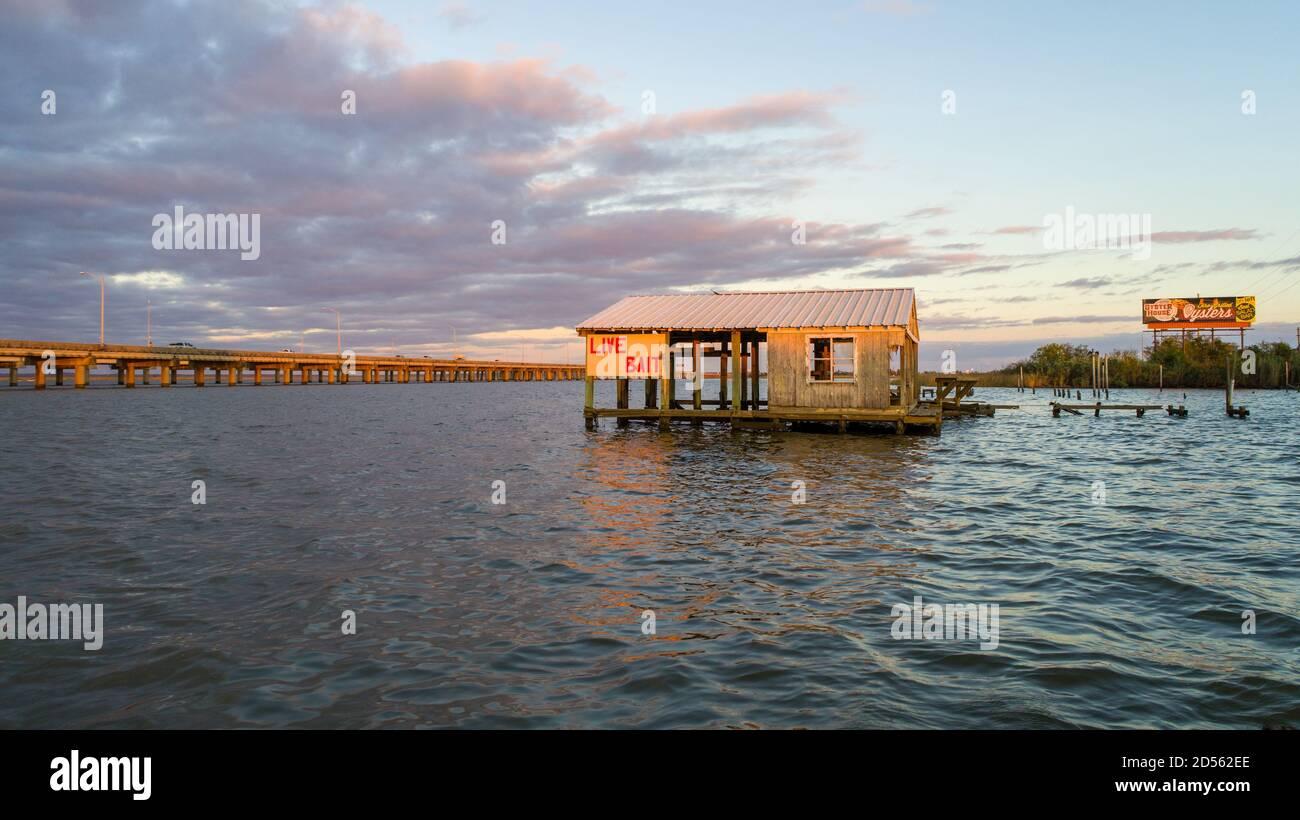 Choza de cebo vivo en la calzada de la bahía móvil Foto de stock