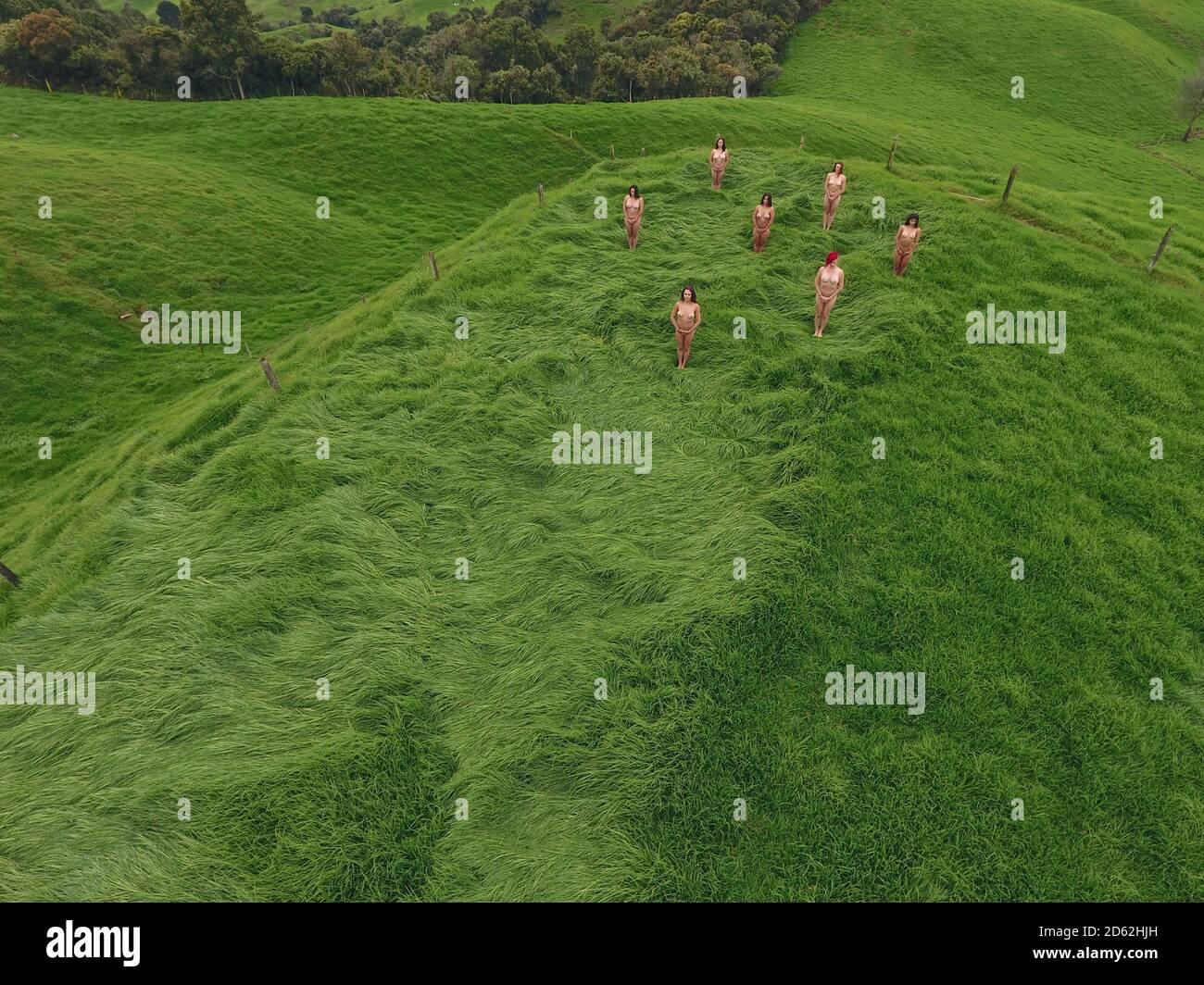 Vista aérea de un grupo de mujeres que meditan en la naturaleza. Foto de stock