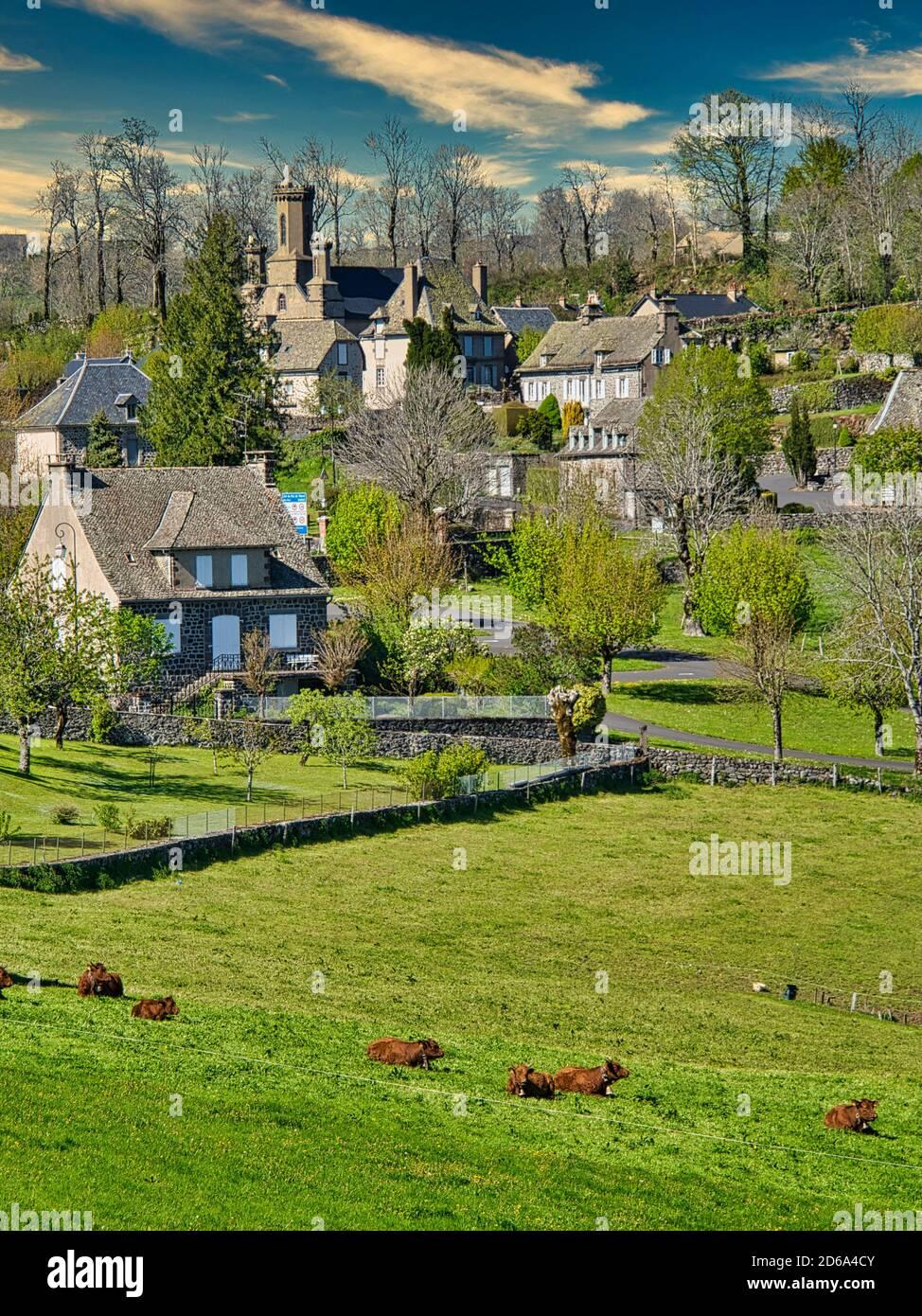 Las afueras de Salers con la iglesia de Notre Dame de Lorette y el ganado Salers, Departamento de Cantal, región de Auvernia, Francia. Foto de stock