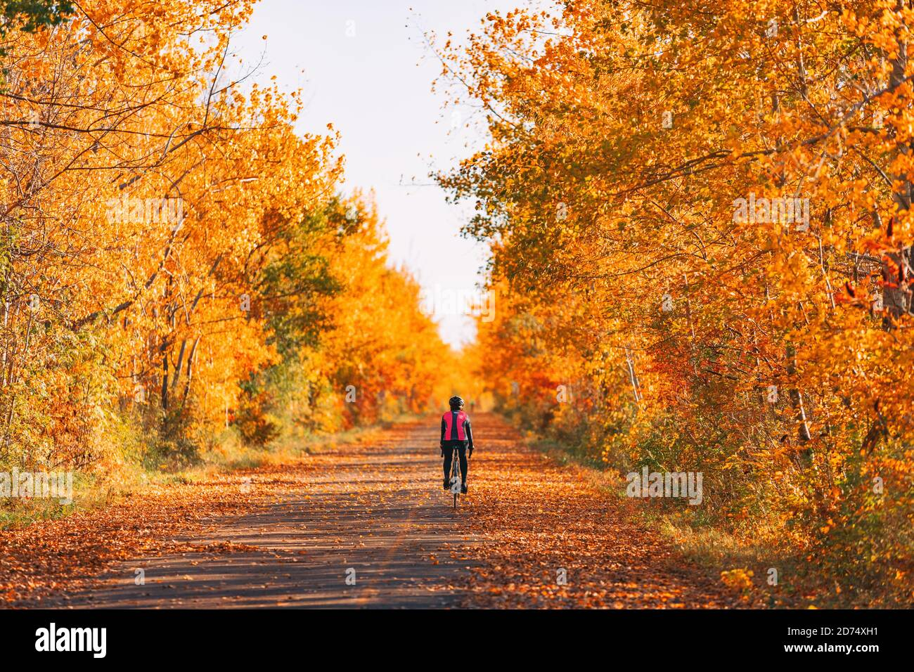 Bicicleta ciclista ciclismo en el bosque de otoño con un hermoso paisaje de hojas de otoño follaje rojo. Ciclismo en carretera Foto de stock