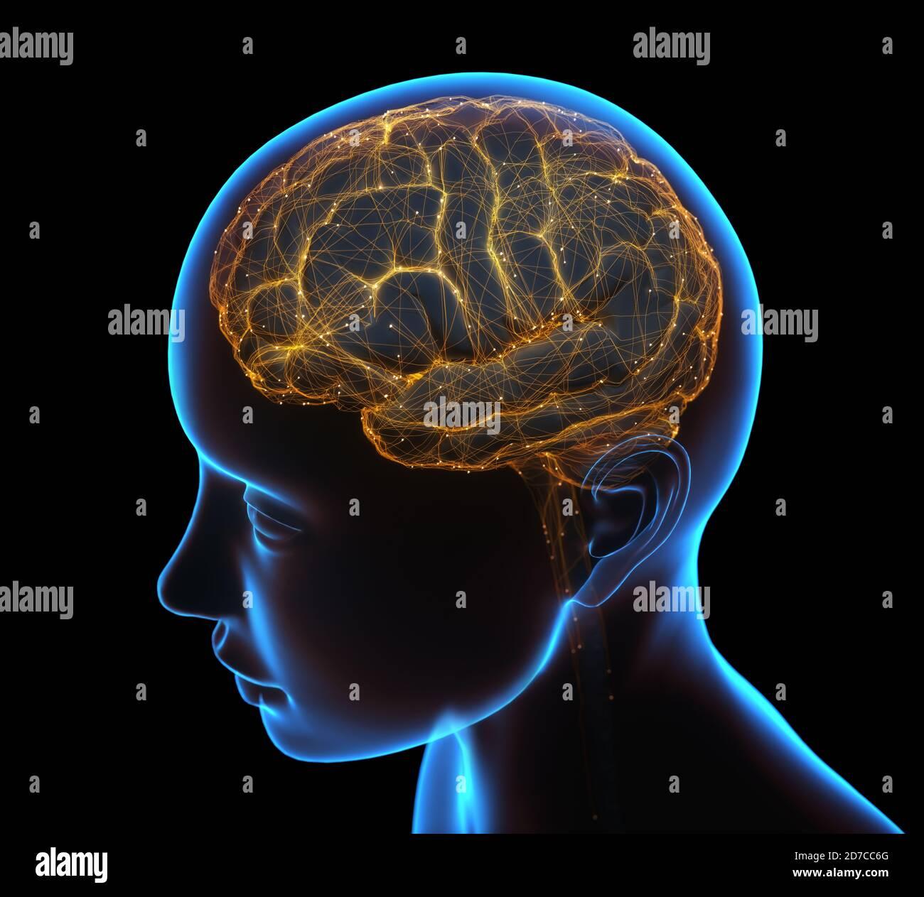 Rayos X de la cabeza y el cerebro humano en concepto de conexiones neuronales y pulsos eléctricos. Foto de stock