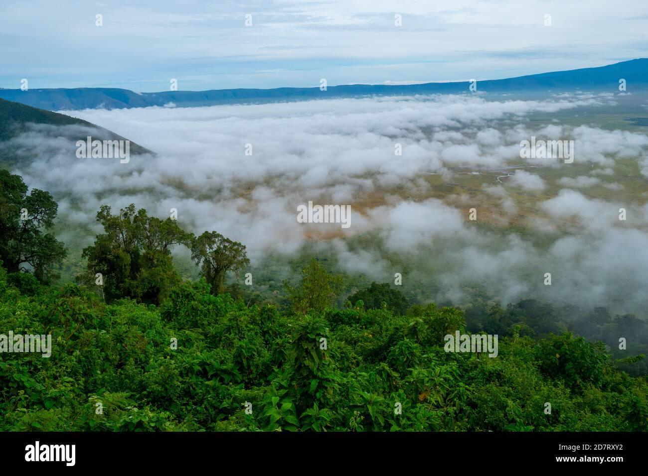 El Área de Conservación de Ngorongoro, es un área protegida y Patrimonio de la Humanidad ubicada a 180 km (110 mi) al oeste de Arusha, en la zona de Crater Highlands de tan Foto de stock