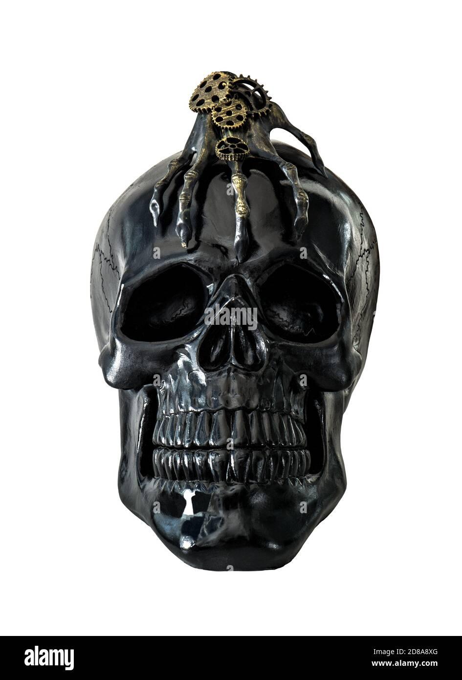 Calavera negra decoración de halloween aisladas sobre fondo blanco Foto de stock