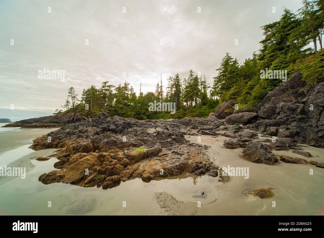 Vista pintoresca de la costa oeste de la isla de Vancouver al atardecer y marea baja con cielo nublado.rocas de la costa sobresalen del agua. Foto de stock